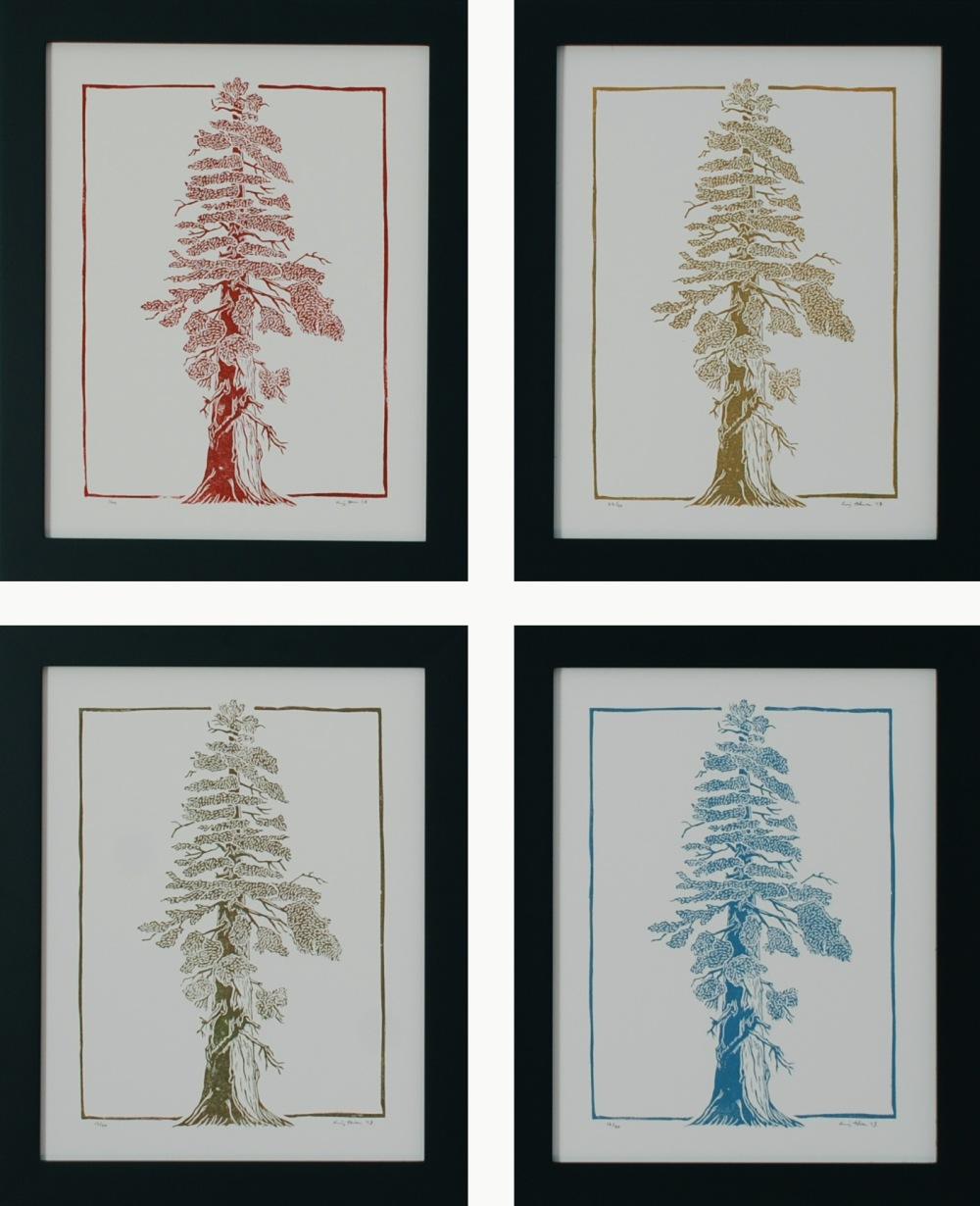 Four Color Redwoods